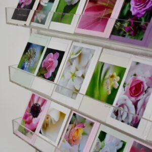 Fotokarten- und Grußkärtchen-Sets